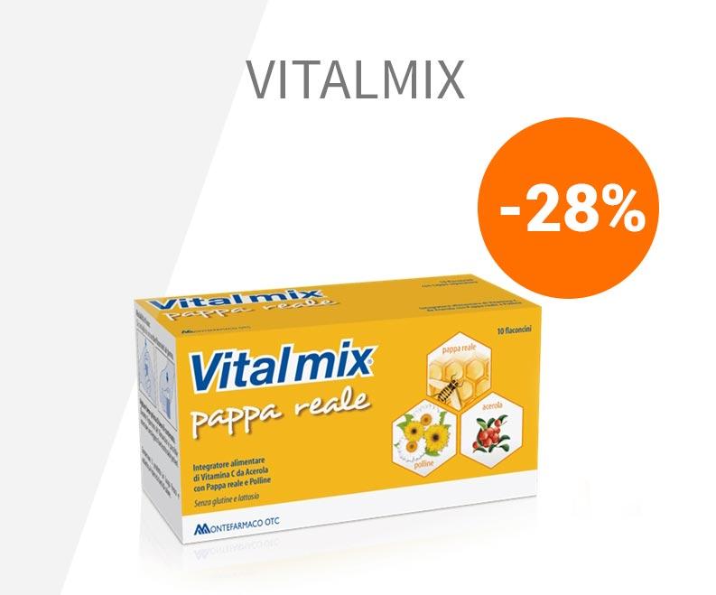 vitalmix-pappa-reale